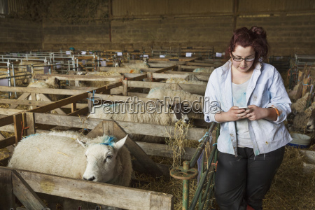 young woman standing a stable next